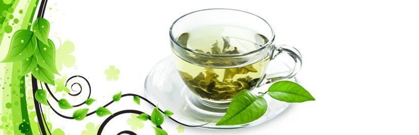 Té Verde para los dientes y las encías saludables